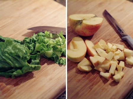 fruitedsalad_preplettuce&apples