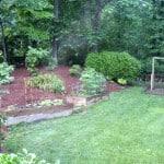 """Garden Update – """"How Does Your Garden Grow?"""""""