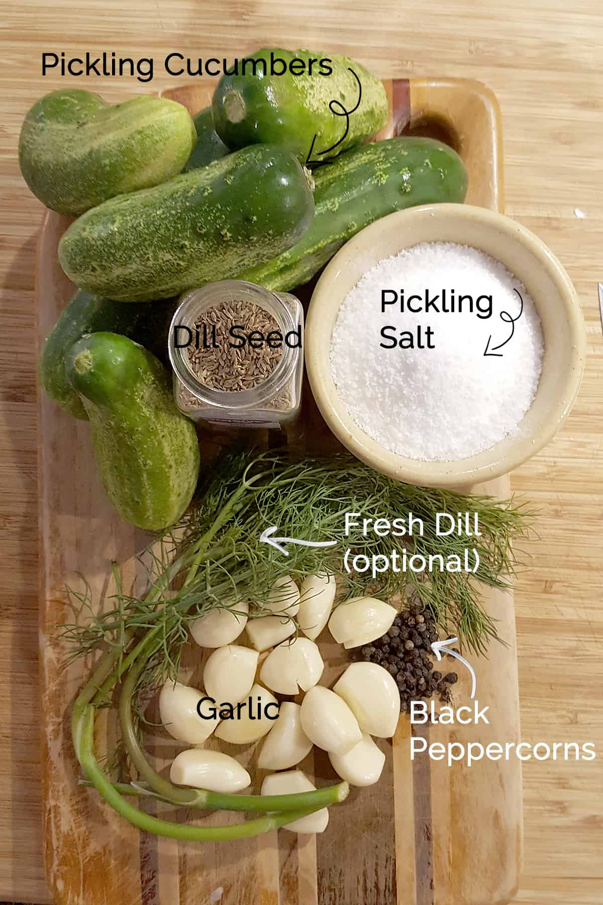 Photo of ingredients needed for Favorite Kosher Dills