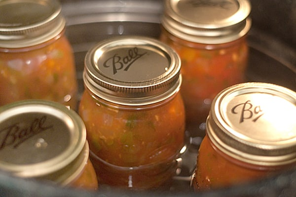 Jars of salsa going into the canner
