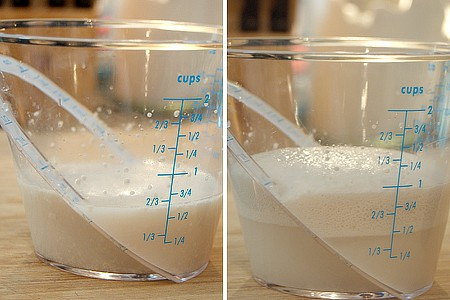 Yeast proofing in a measuring cup.