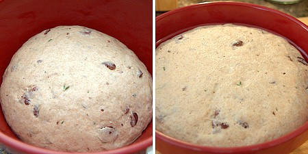 Bread dough rising in a large bowl.