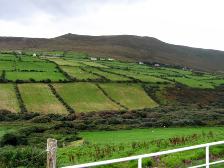 The Irish countryside