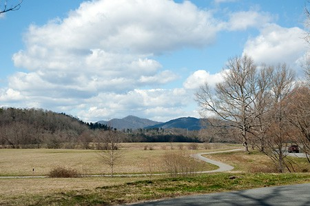 Biltmore estate view