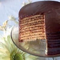 Chocolate Little Layer Cake