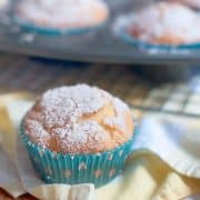 Orange Blossom Muffins - Slightly sweet muffins with orange marmalade and pecans in the batter. Enjoy them with a cup of tea or coffee. https://www.lanascooking.com/orange-blossom-muffins/