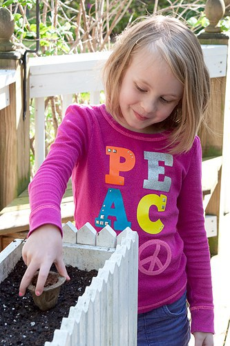 Planting Scott's Gro-Ables #gardening #planting #herbs #veggies #gro-ables #seedpods