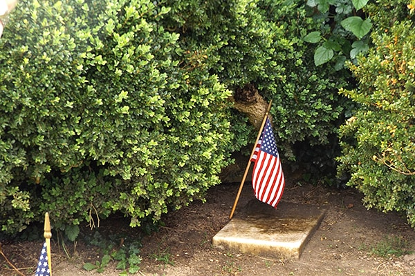 Each grave, no matter how overgrown with shrubbery or trees, was recognized for Memorial Day. From @NevrEnoughThyme https://www.lanascooking.com/americas-historic-triangle