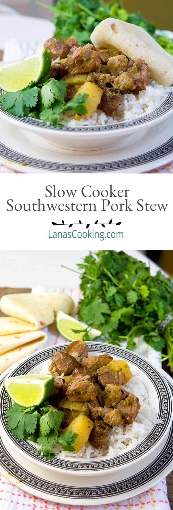 Pork, potatoes, and salsa verde make this delicious Slow Cooker Southwestern Pork Stew a Tex-Mex delight! Slow Cooker Southwestern Pork Stew from @NevrEnoughThyme https://www.lanascooking.com/slow-cooker-southwestern-pork-stew