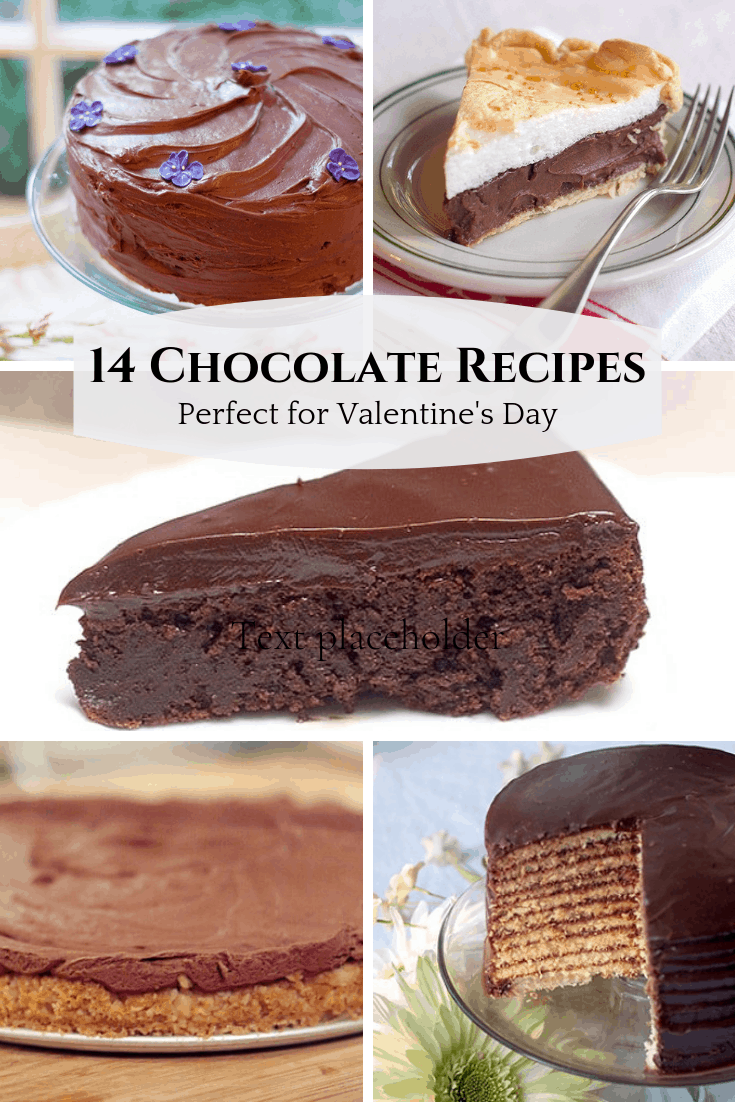 A collection of 14 of my best chocolate recipes for your Valentine's Day menu. Pick one or two to make for your best sweetheart. From @NevrEnoughThyme https://www.lanascooking.com/14-chocolate-recipes-perfect-valentines-day/