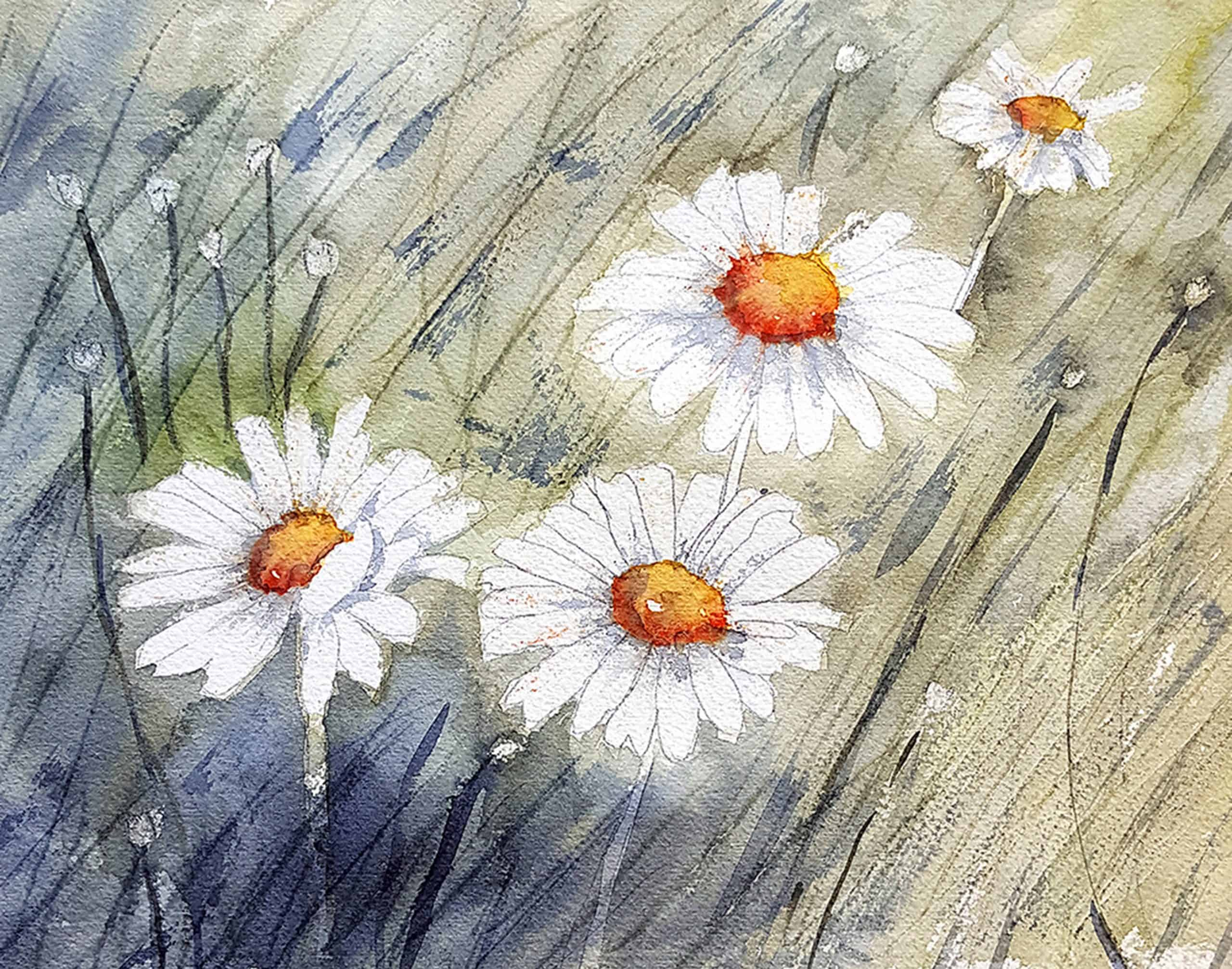 """Meadow Daisies"" original watercolor by Lana Stuart"