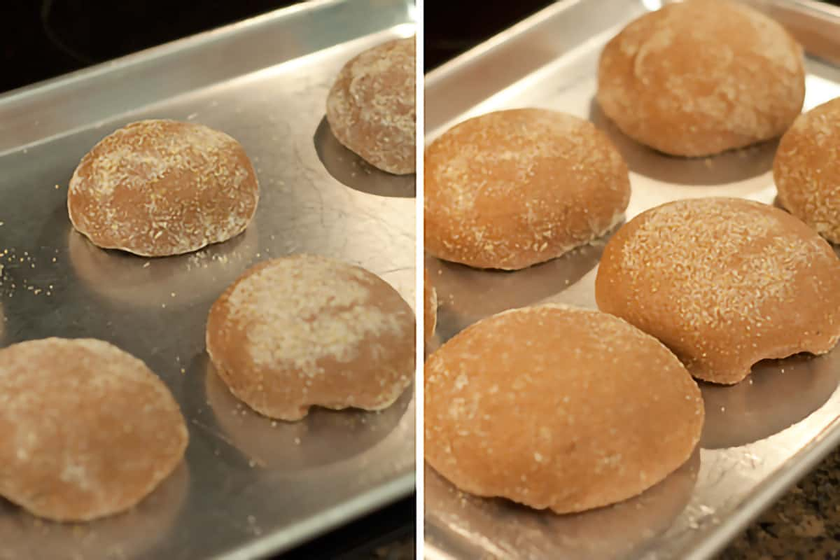 Collage showing loaves on a baking before and after second rise