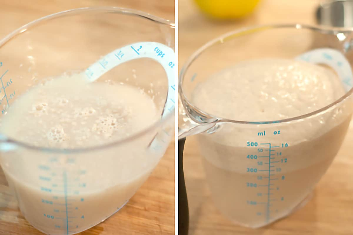 Photo collage showing stages of yeast proofing in a measuring cup