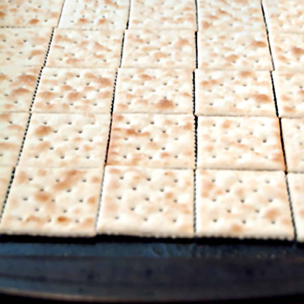 Saltine crackers lined up on a rimmed baking sheet.