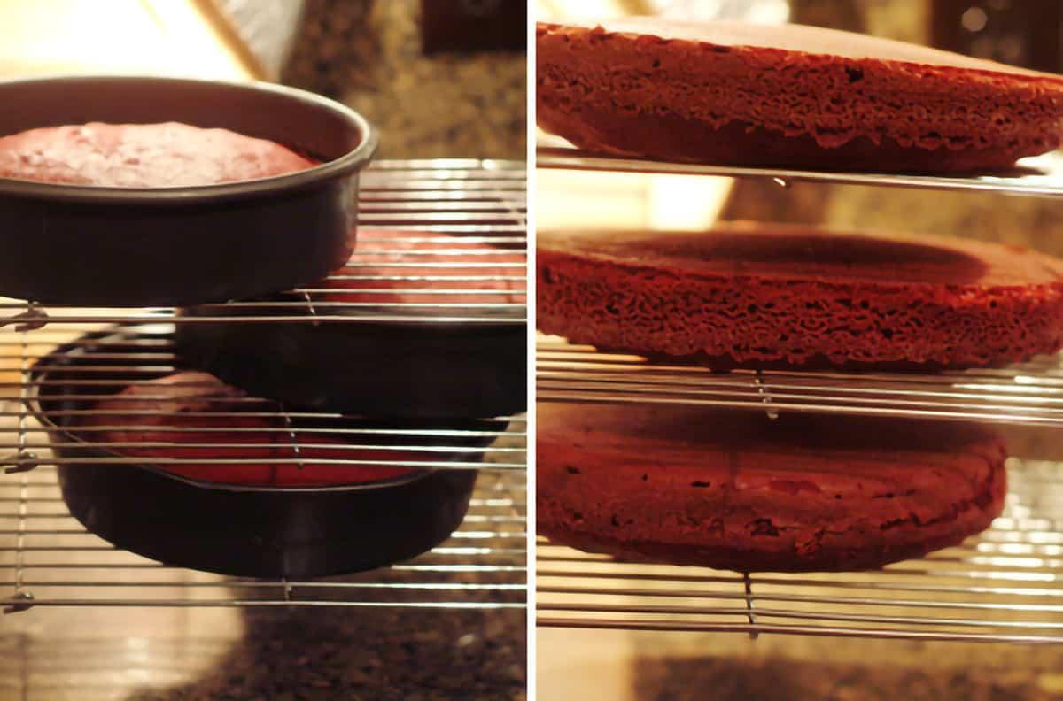 Cake layers cooling on racks.